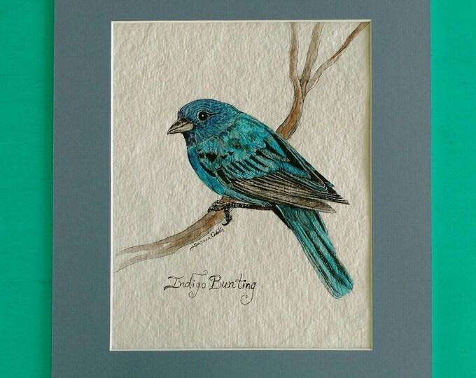 INDIGO BUNTING BIRD, Original Watercolor Painting on Paper by Susana Caban, Bird Art, Nature Study, Home Decor, Blue Bird Art and Design
