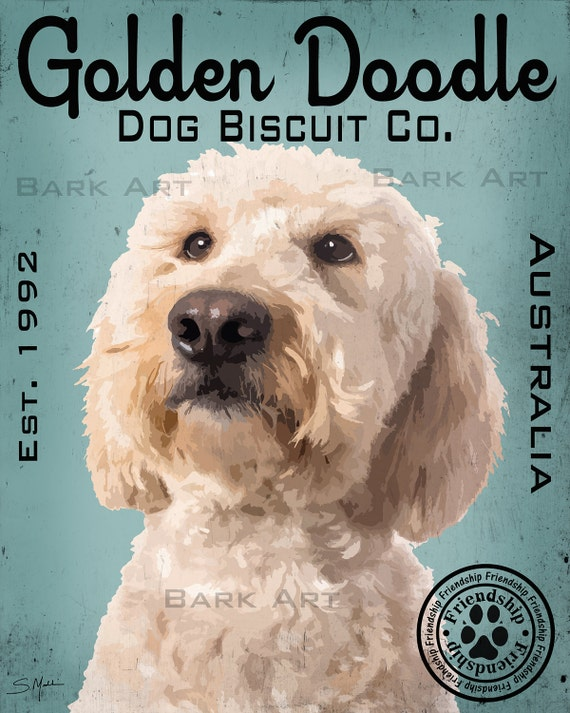 """Goldendoodle art signed by artist Golden doodle art print Labradoodle ar 8x8/"""""""