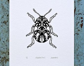 Beetle / Coleoptera 'specimen' (noir) - Limited edition one-colour screenprint