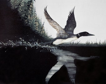 Loon Taking Off - Lithographic Print