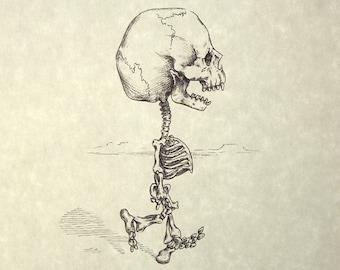 Charlie Brown Skeleton Print 8x10