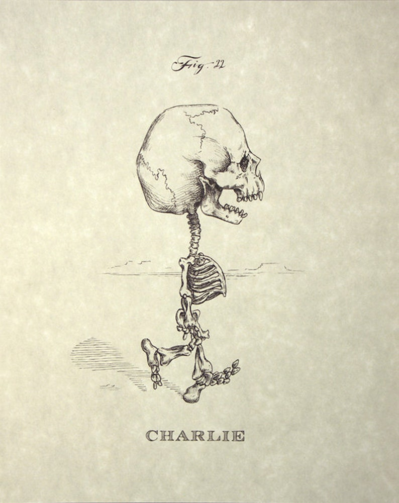 Charlie Brown Skeleton Print 8x10 image 0