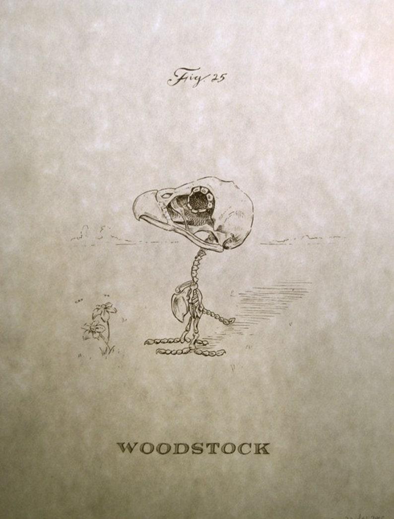 Woodstock Skeleton Print 8x10 image 0