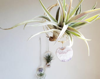 Gardening Gift, Hanging Planter, Air Plant Nest With Amethyst Slice Heart, Airplant Hanger, Crystal Air Plant Holder, Gardening Gift