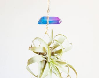Air Plant Crystal Hanging Planter, Aura Quartz Airplant Display, Little Something, Hot Pink and Blue, Fun Gift For Teen
