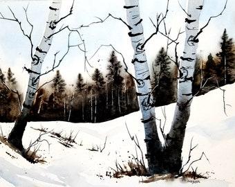 Original Watercolor Birch Tree Painting, Jim Lagasse , Watercolor , Birch tree painting, Watercolor Painting, landscape art, Autumn