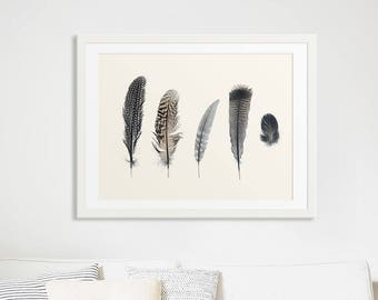 Large Feather Prints // Large Feather Wall Art // Large Neutral Print // Minimalist Wall Art Prints // Large Feather Prints - Collection 2