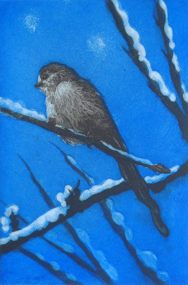 Long-tailed Tit Winter  Fine Art Print  Limited edition of image 0