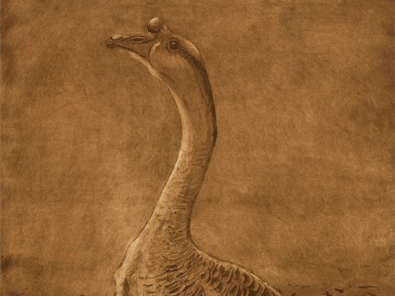 The Chinese Goose image 0