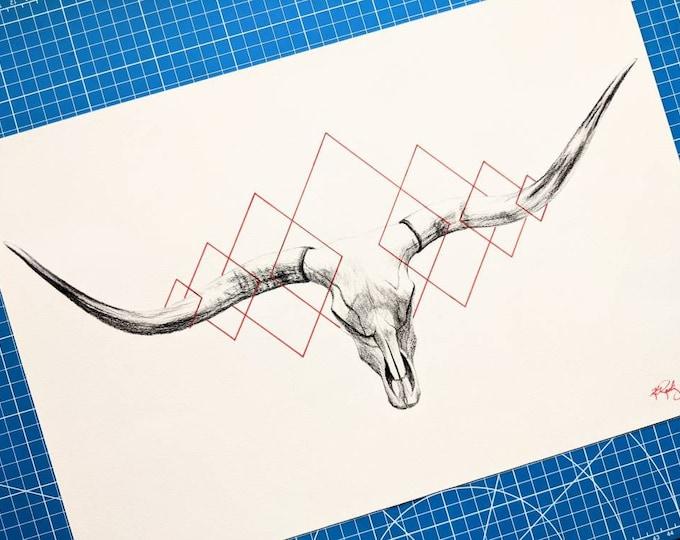 Longhorn Skull Original Drawing