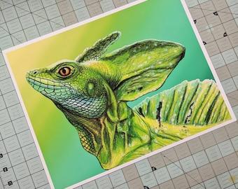 Wildlife/Nature Prints