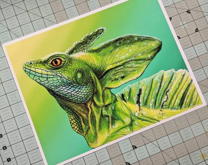 Basilisk Lizard Art Print