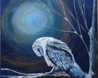 Limited Edition Giclée Print - Sleeping Owl titled Nighttime Blues - by Jodi Myers