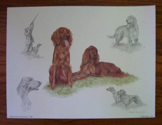 IRISH SETTER CHARMING DOG GREETINGS NOTE CARD LOVELY STANDING DOG