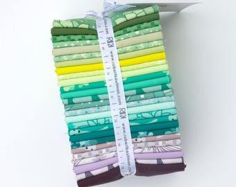 Terrarium + Coordinates (cool) - Fat Quarter Bundle by Elizabeth Hartman - 26 pieces