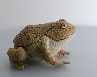Very Dreamy Toad, Handmade Ceramic Sculpture Box