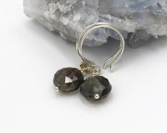 Labradorite Earrings - sterling silver, Labradorite coin briolettes