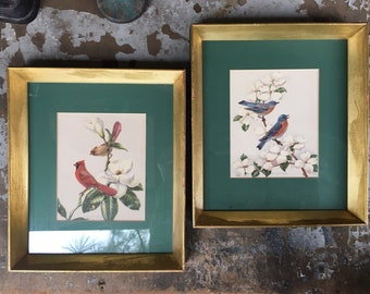Pair of Bird and Flower Prints in Gold Midcentury Frames with Green Mat, Red Cardinal and Bluebird