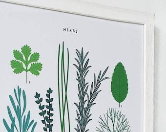 A3 Herbs Print