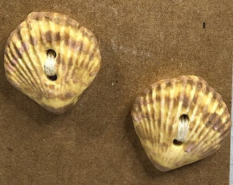 Scallop Shell Ceramic Buttons