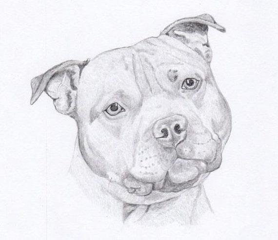 Staffordshire Bull Terrier firmado personalizado Original