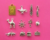 The Aladdin Collection - 11 different antique silver tone charms