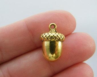 6 Acorn charms antique gold tone GC320