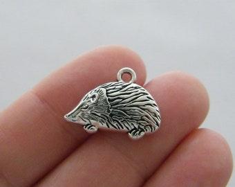 BULK 50 Hedgehog charms antique silver tone A649