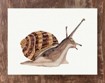Snail Painting Snail Art Snail Print Woodland Animals