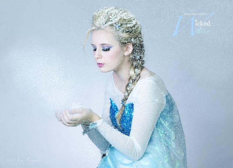 Elsa Costume for Adults Custom Elsa dress  Elsa Snow Queen image 0