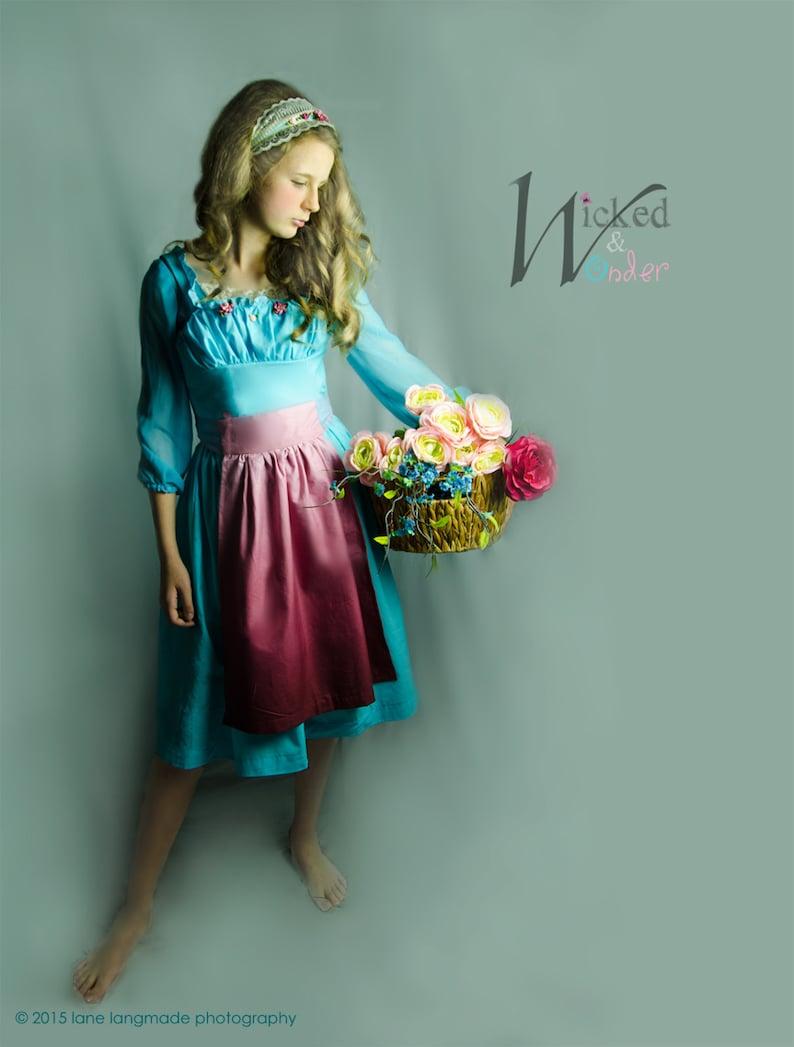 Cinderella Ella Dress 2015 Cinderella Servant Girl Dress for image 0