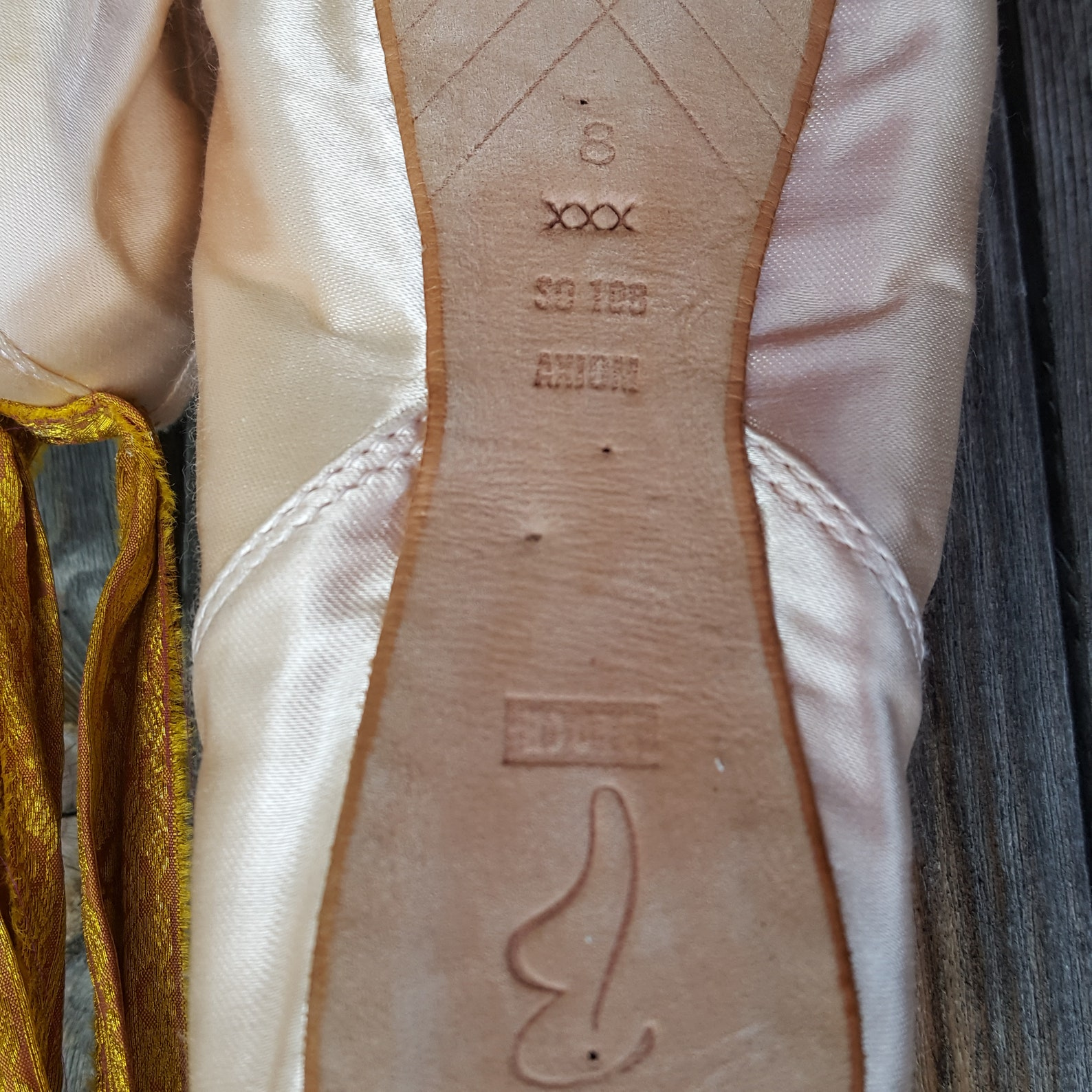 ballet pointe shoes, with petite point