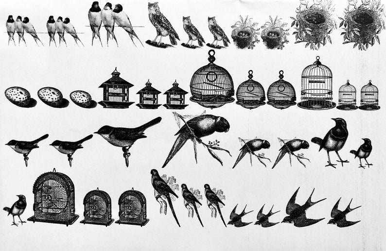Birds and Cages Decals for Enamel Image Transfer Ceramics image 0