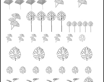 Plant Decals, Full Sheet, Plants, Gingko Decals, Monstera, Painting with Fire, Decals for enamel, Enamel, Ceramic Decals, Ceramics, or Glass