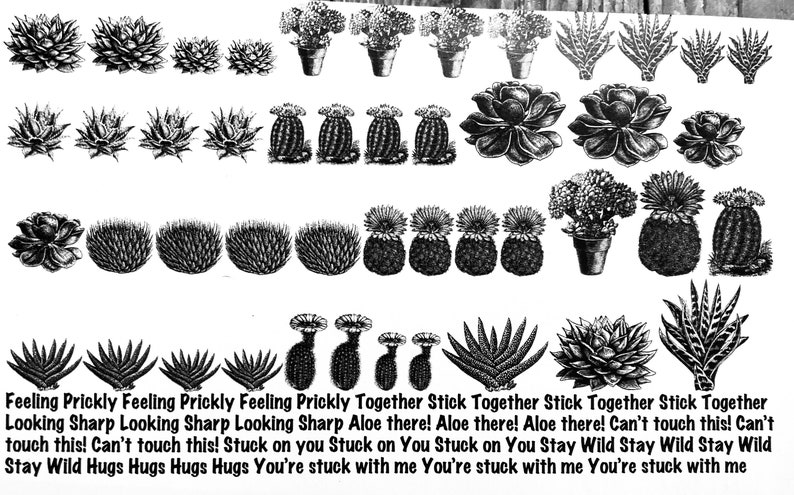 Succulent & Cactus Decal for Enamel Image Transfer image 0