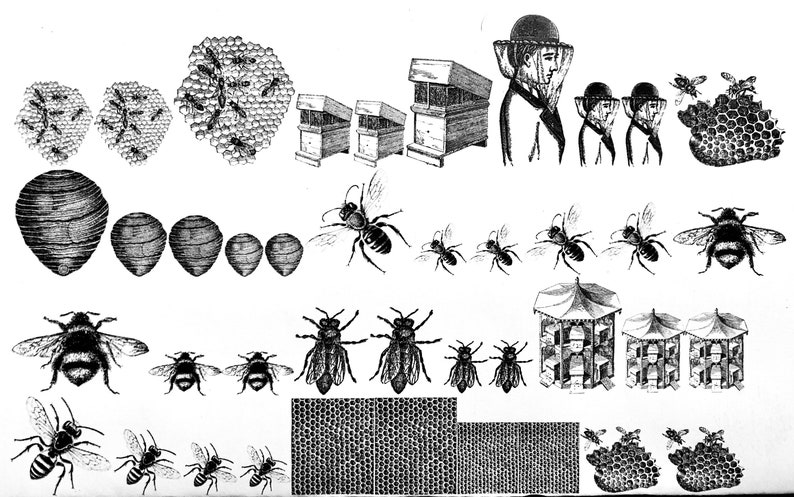 Bee Keeping PatternDecal for Enamel Image Transfer image 0