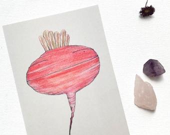 Rapelia botanical postcard / beetroot illustration / cute vegetable character / 10x15 cm / chiba