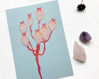 Bouquet, botanical postcard / cute flower characters / 10x15 cm / chiba