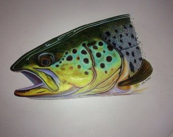 "Colored Pencil Brown Trout ORIGINAL 13.5x17"""
