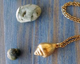 Deep Sea. Fabulous 14K Gold Seashell Charm Pendant. Hand Made Natural Seashell Pendant. Sea Inspired Design. Fine Art Jewelry. Recycled Gold