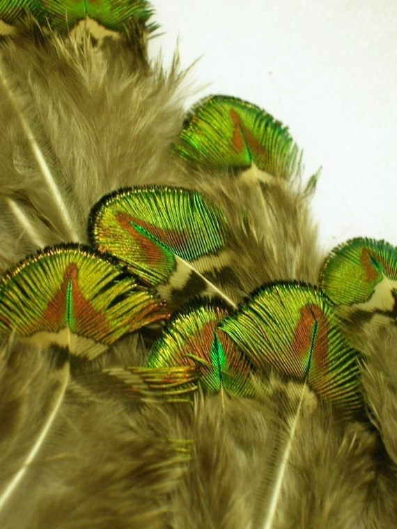 hats /& craft use Chicken feathers 5/'/'-7/'/'10 pcs   For fascinators