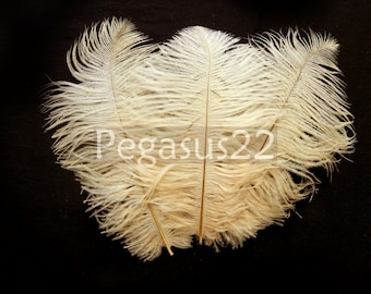IVORY Ostrich Feather Drab (6-8 inches, 3 package option) feather for hat,fascinator,hat,corset,dresses,bouquets, costume,fans