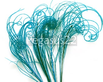 TEAL Blue Peacock curled feather sprigs (6 -8 Inches)(3 packages)  plumes for hats,fascinators,costume headdress,brooch bouquet