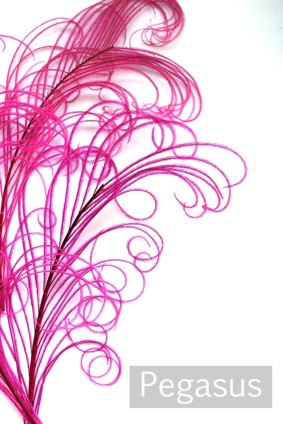 DUSTY ROSE Pink Peacock curled feather sprigs 3 packages 6-8 Inches plumes for hats,fascinators,costume headdress,brooch bouquet