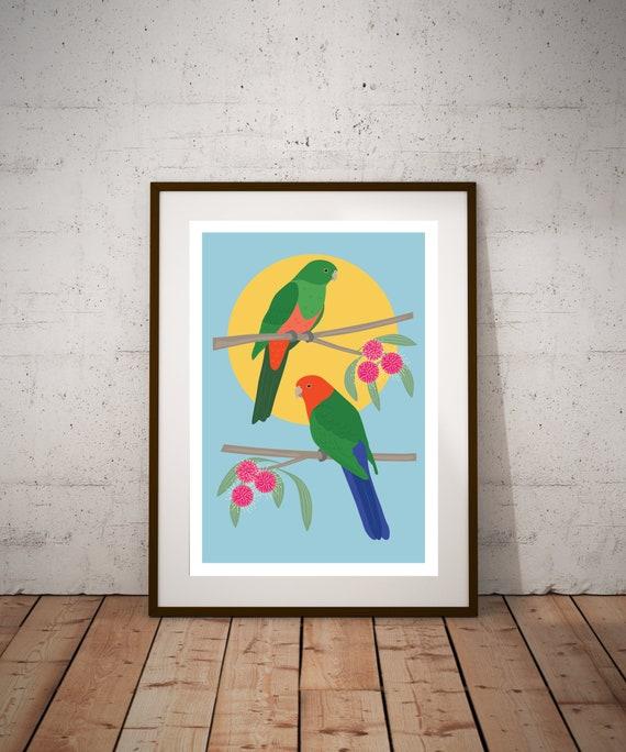 PRE-ORDER** King Parrots Fine Art Print