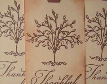 Thanksgiving Tags - Thankful - Thanksgiving Decor - Fall Tags
