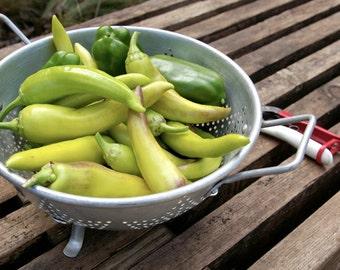 Organic Sweet Banana Pepper Seeds