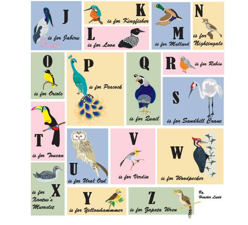 photo about Alphabet Poster Printable identify Printable Fowl Alphabet Poster- Chicken Alphabet - Poster
