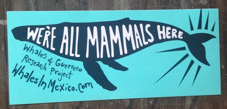 We're All Mammals Here Screenprinted Stickers image 0