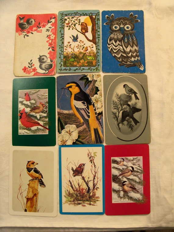 swap cards playing cards New Zealand Aotearoa kiwi bird